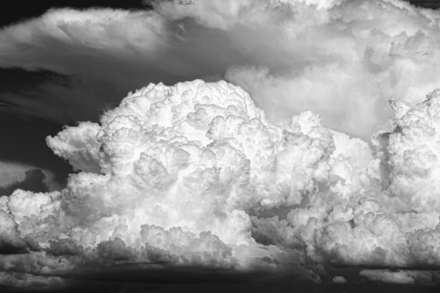 black and white photography | Terry Spear's Shifters