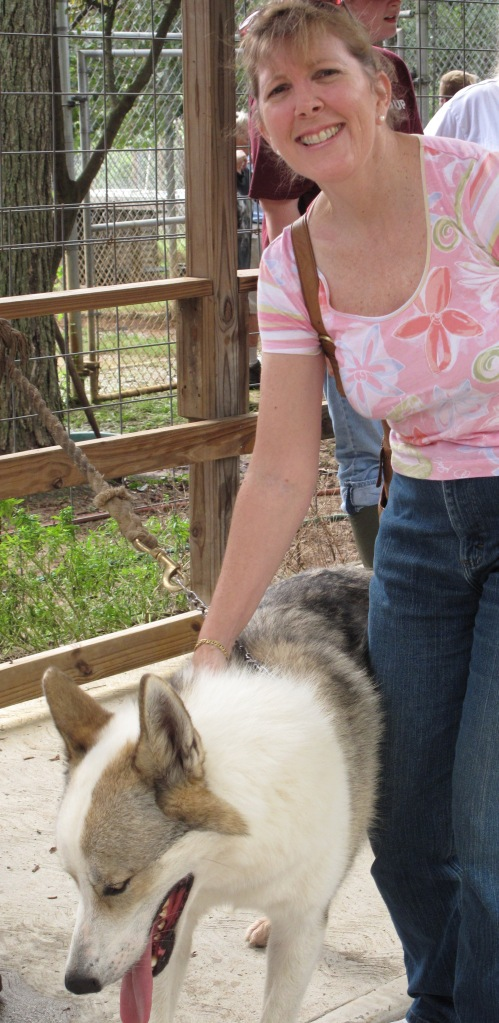 Wolf Dog and Me4