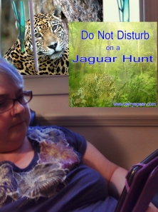 Terree Nelson Lyman reading Jaguar Hunt copy
