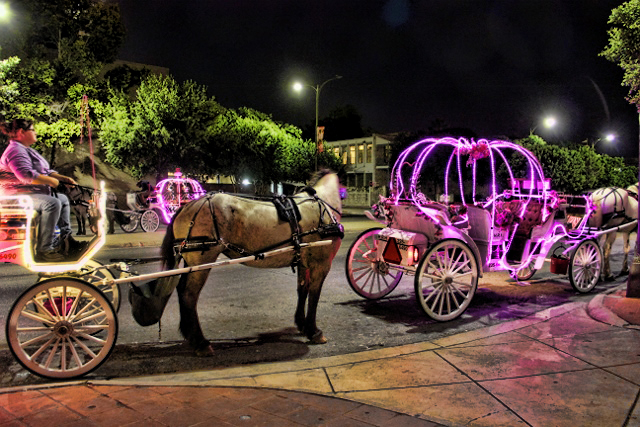A Romantic Carriage Ride In San Antonio Terry Spear S