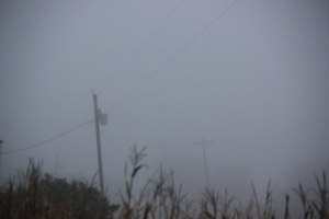 Showing depth of fog via telephone poles