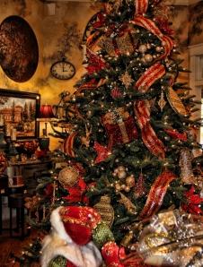 Salado Christmas 2012 002 (605x800)