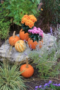 pumpkin flower planter (427x640)