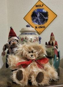 Blondie Bear who has lots of fluffy fur!
