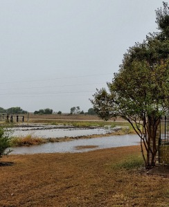 lake in side yard and fields