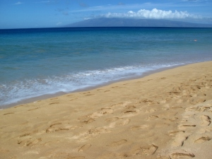 Hawaiian Beach
