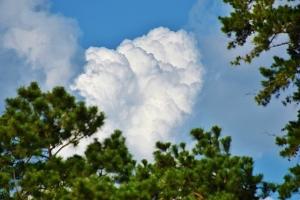 storm clouds 008 (640x427)