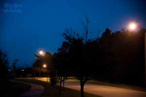 early-morning-1000iso-blue-sky-fog-lights-003