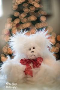 white-bear-colorful-lights-soco-009