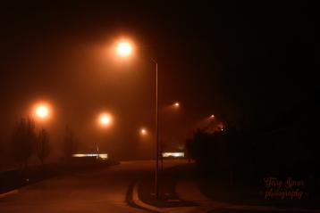 fog 900 017