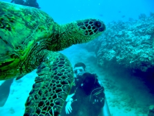 Blaine scuba diving and turtle Hawaii1 (640x480) changes