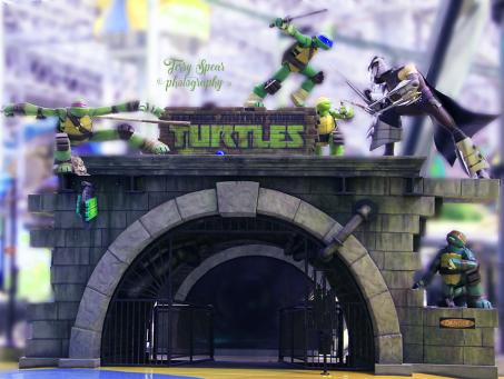 Ninja Turtles 900