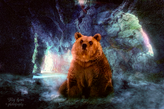 Cave Background green and bear orange filter 900 -6