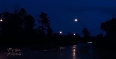rainy morning 900 002