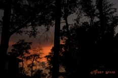 sunset 900 022