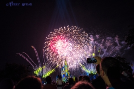 fireworks castle Magic Kingdom 900 Orlando Disney RWA 2017 2267