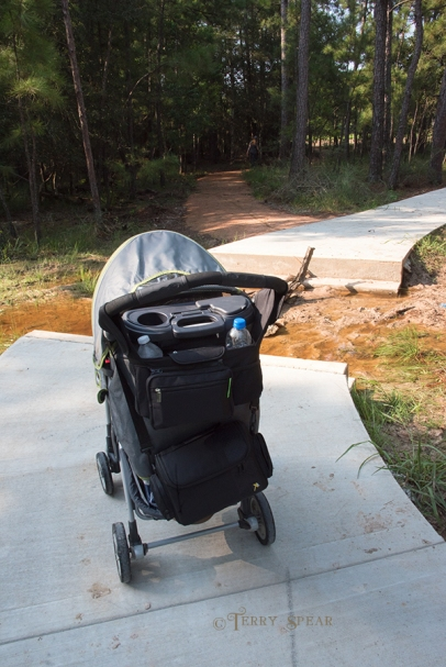 baby in buggy at break in pavement 900