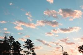sunrise 900 wisps of clouds 005