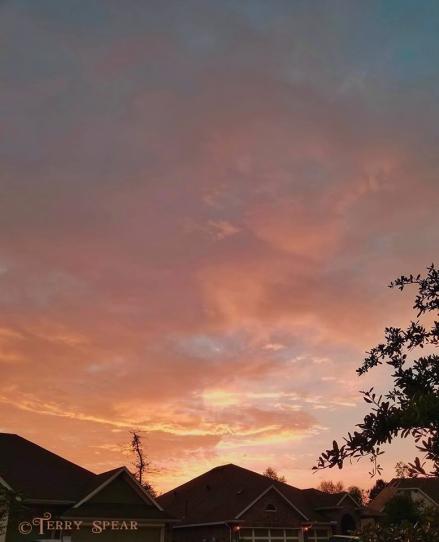 sunrise on a walk