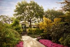 flowers and fall 900 arboretum 819