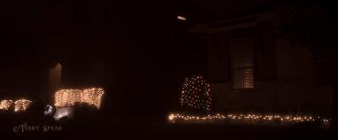 fog and Christmas lights 800 007