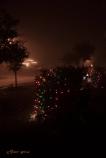 fog and Christmas lights 900 005