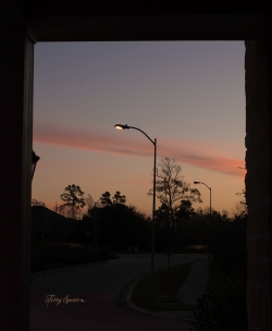 sunrise orange 1000 002