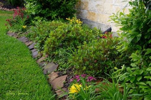 front flowerbed 1000 017